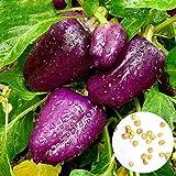 XQxiqi689sy 30 Unids/Bolsa Semillas De Pimiento Alto Tasa De Germinación Embellecer Púrpura Dulce Y Delicioso Semillas De Pimiento Linterna Balcón Semillas de Pimiento morrón