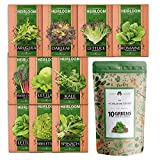 10 Heirloom Lettuce and Leafy Greens Seeds -...