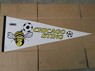 soccer team pennants