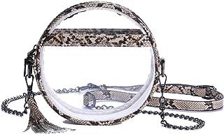 Clear Crossbody Bag Fashion Clear Purse Women Snakeskin Chain Shoulder Handbag Purse Stadium Approved Clear Bag