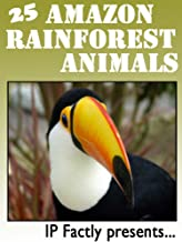 25 Amazon Rainforest Animals. Amazing facts, photos and video links to some of the most amazing animals from the rainfores...