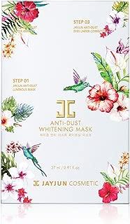 anti dust mask jayjun