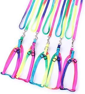 IEason Pet Collar, Nylon Pet Cat Dog Kitten Adjustable Colorful Harness Lead Leash Collar Belt