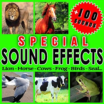 Lion, Horse, Cow, Frog, Bird, Seal... Special Sound Effects.
