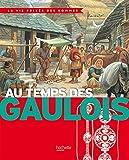 Au temps des Gaulois - Hachette Enfants - 17/09/2014