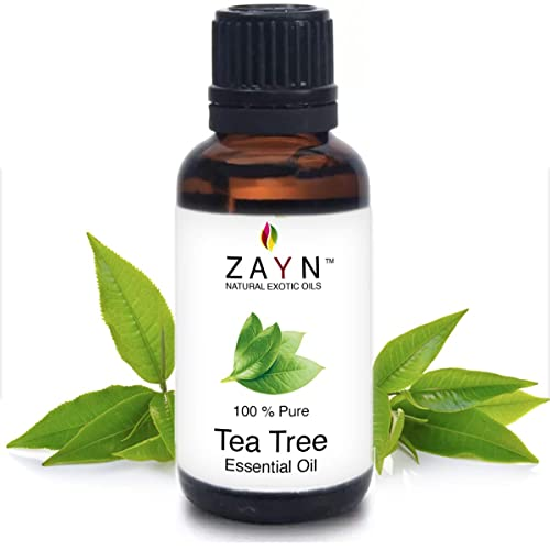 Zayn Tea Tree Essential Oil Pure & Undiluted - Natural Way For Skin, Hair And Acne Care (10 ml)