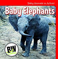 Baby Elephants (Baby Animals in Action!)