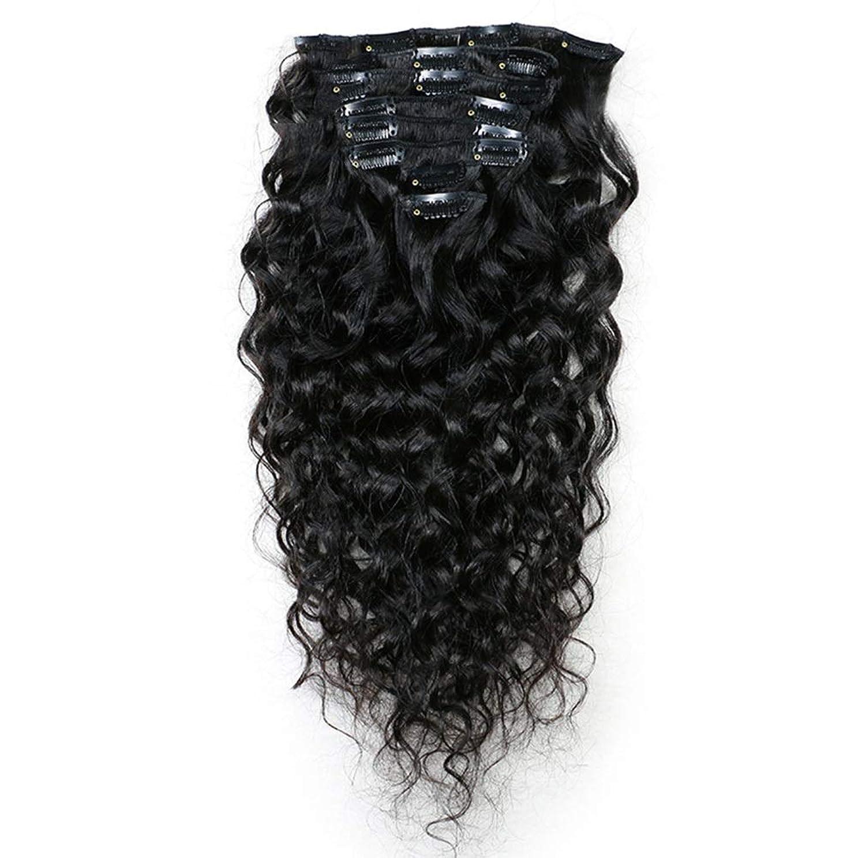 振動させる安全療法Yrattary 100%本物の人間のヘアクリップヘアエクステンション黒フルヘッド10-24インチロングストレートナチュラルな見た目の複合毛レースかつらロールプレイングかつら長くて短い女性自然 (色 : 黒, サイズ : 16 inch)