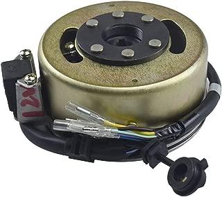 TDPRO 2-Coils Lgnition Magneto Stator Generator Plate Flywheel Assembly for Dirt Pit Bike SSR SDG