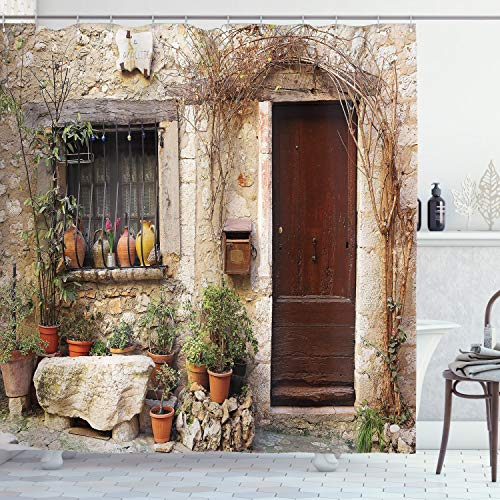 Ambesonne Shutters Decor Collection, Flowerpot plants in Front...
