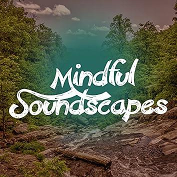 Mindful Soundscapes