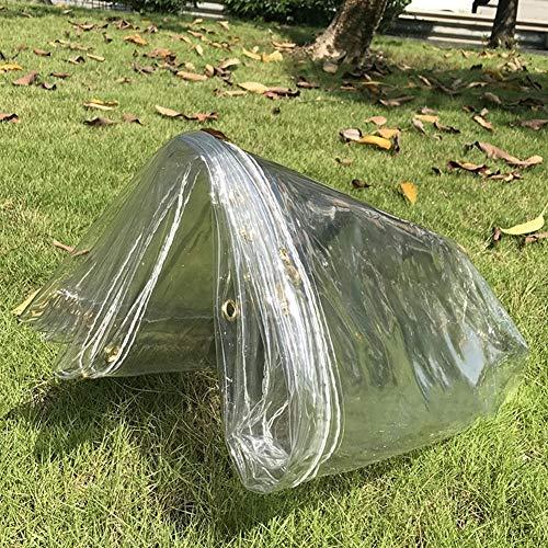 QIANGDA Bâche De Protection Paillage PVC avec Oeillets Imperméable Rideau De Porte Facile À Couper, Épaisseur 0.3mm, Transparent, Tailles Personnalisable (Taille : 2mx3m)