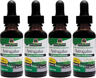 Nature's Answer Astragalus Root, 1 Ounces each (Value Pack of 4)