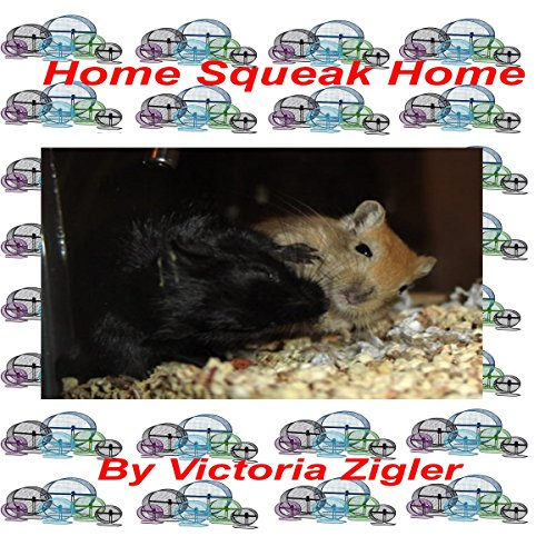 Home Squeak Home cover art