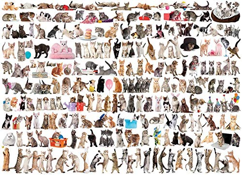 74Tdfc Rompecabezas de madera para adultos 1000 piezas Costura de imágenes en movimiento de animales 75X50Cm Rompecabezas 1000 piezas Rompecabezas de madera para adultos