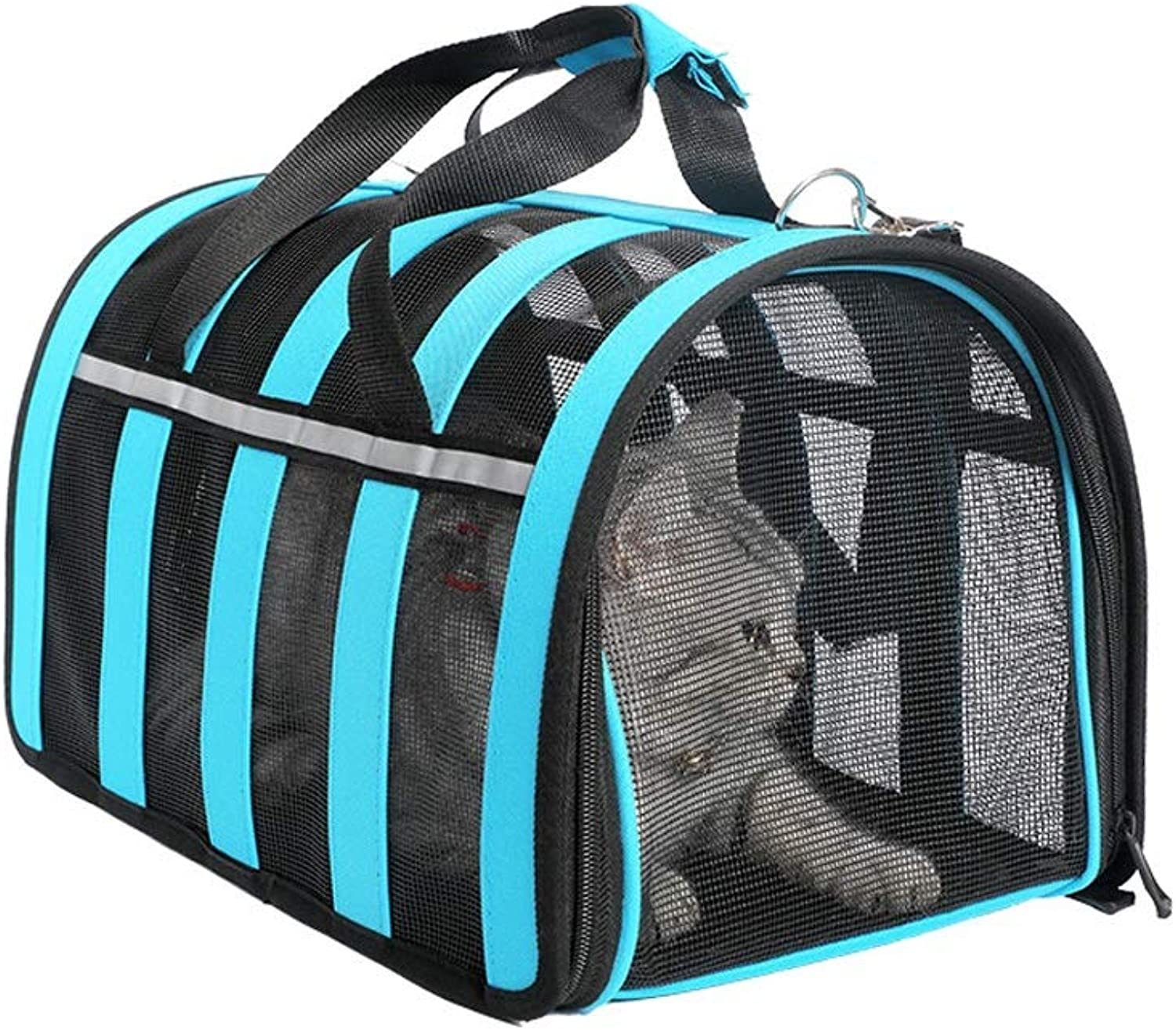 Airline Approved SoftSided Pet Travel Carrier for Dogs and Cats for Medium Puppy and Cats,Premium Zippers and Locking Clasps