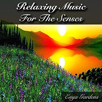 Relaxing Music for the Senses