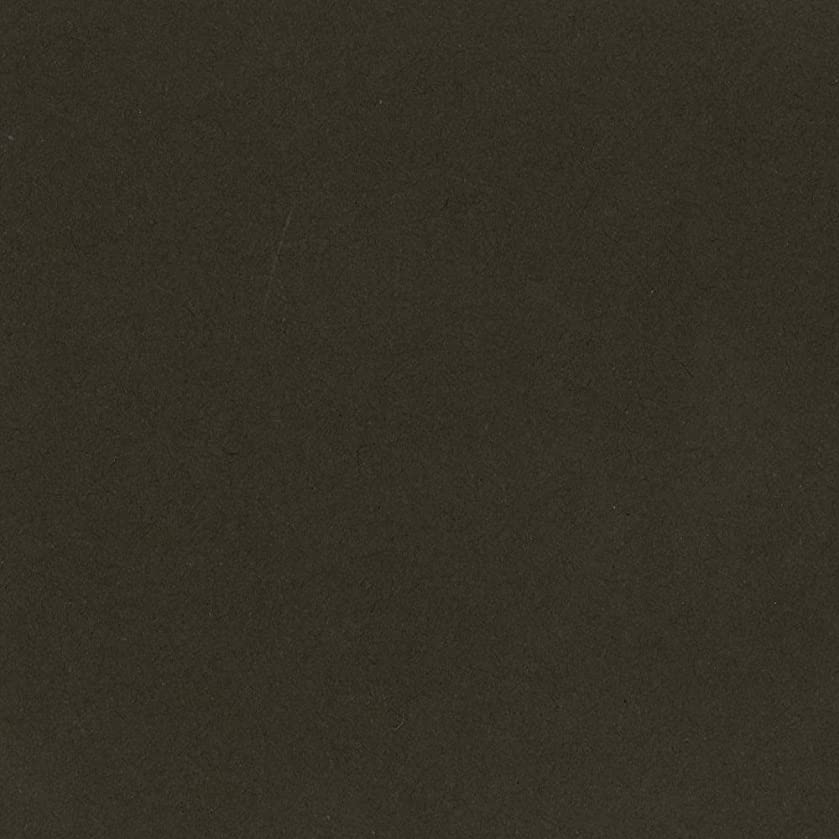 Bazzill Basics T9-962 Card Shoppe Heavy Weight Cardstock, Candy Bar, 25 Sheet Pack, 12 x 12 Inches