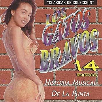 14 Exitos Historia Musical de la Punta