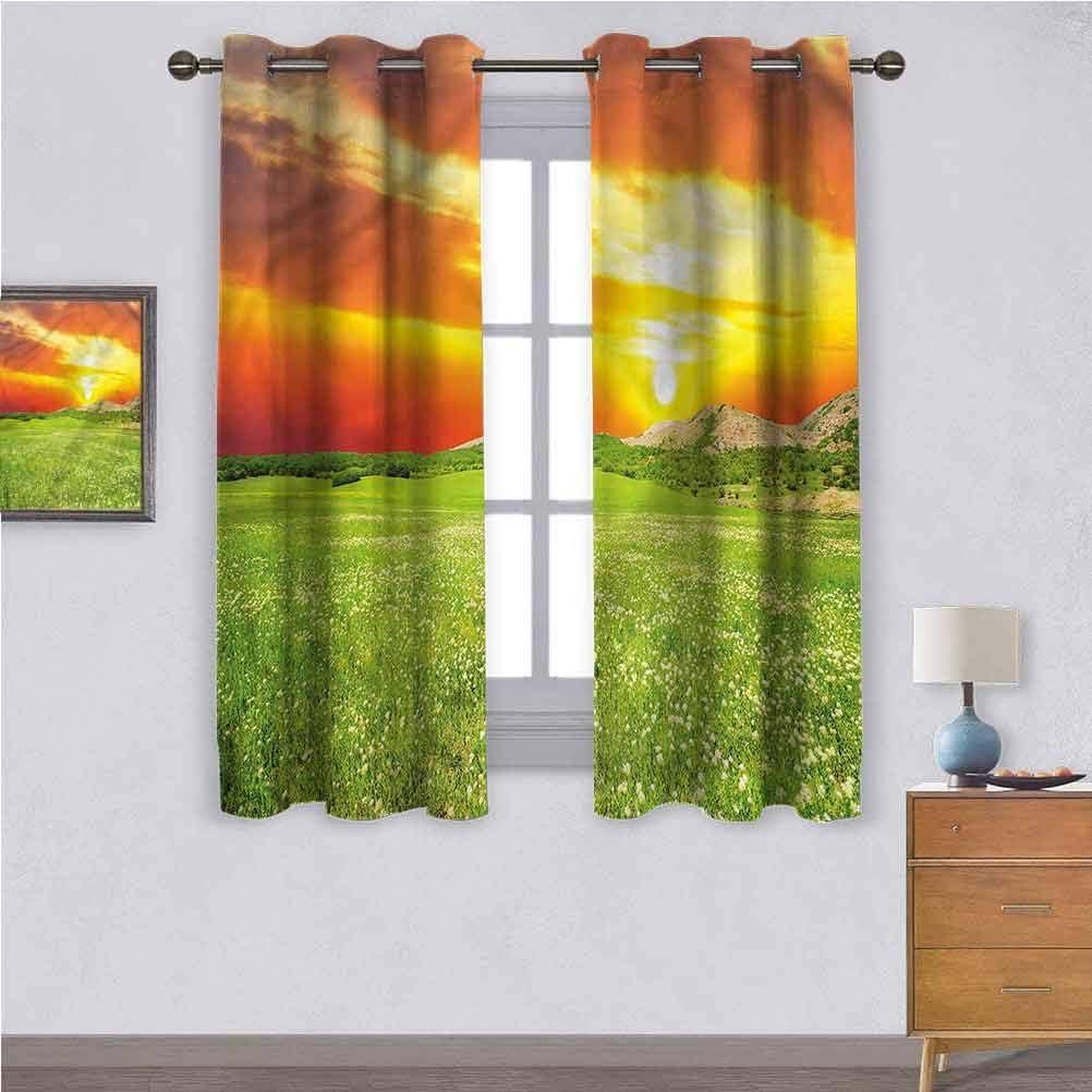 Jinguizi Window Curtain Courier shipping free shipping 2021 new Kids Flower Meadow Nature Daisy
