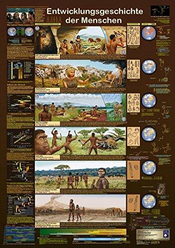 Entwicklungsgeschichte der Menschen (Planet-Poster-Box)