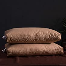 Special/Simple Sleeping Bed Pillows—Pillows for Back/Stomach/Side Sleepers, Pillows for Neck Pain Suffers -gray_48 * 74cm...