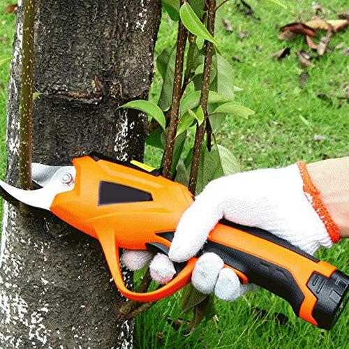 HMNS Elektrische Gartenschere, 3,6 V Akku-Gartenschneider mit starker Stahlklinge Pflanzenschere für Rose, Apfelobstbaum, Zweige,No Extension Rod