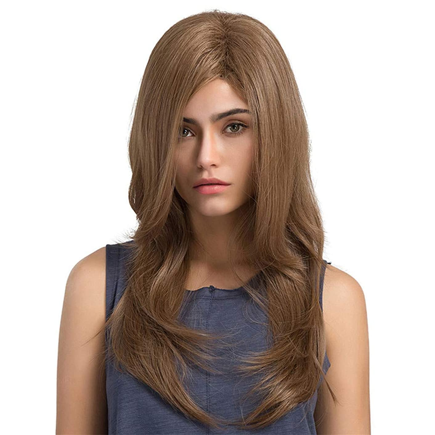 作り上げる花輪写真の女性の長い巻き毛のかつら パーティーかつら65 cm