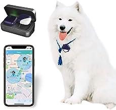 PETFON2 Rastreador GPS para mascotas, sin tarifa mensual, dispositivo de seguimiento en tiempo real, para perros y mascotas Monitor de actividad (solo para perros)