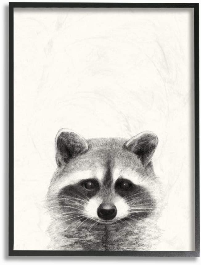 Stupell Industries Raccoon Portrait Grey Drawing Design Designed by Victoria Borges Art 10 x 0.5 x 15 Wall Plaque