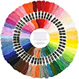Similane Embroidery Floss 50 Skeins Cross Stitch Thread Rainbow Color Friendship Bracelets...