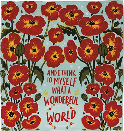 Primitives by Kathy 102726 LOL Made You Smile Dish Towel, 28 x 28-Inches, What a Wonderful World