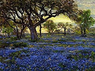 The Museum Outlet - Old Live Oak Tree and Bluebonnets on the West Texas Military Grounds, San Antonio, 1919-20 - Poster (Medium)