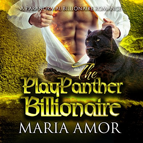 The PlayPanther Billionaire audiobook cover art