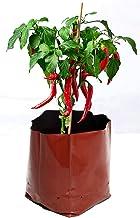 ROCHFERN Polyethylene UV Treated Grow Bag, Black, 30 x 16 x 16 cm, 15 Pieces