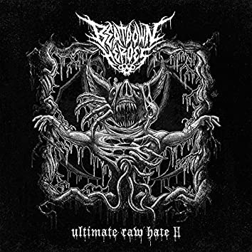 Ultimate Raw Hate ll
