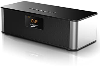 Bluetooth Speaker Stereo FM Radio, ZEPST Wireless Speaker with LED Screen, Alarm Clock, Bold Bass, Handsfree, 8h Playtime for iPhone, Mobile, Tablet and PC