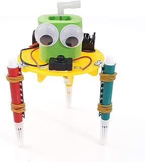 Amazon.es: diy robot