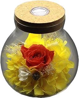 [Nouvelle version 2018] Havenfly Fleurs préservées faites à la main Décoration rose avec verre en forme de pomme-Meilleur ...