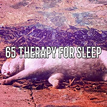 65 Therapy For Sleep