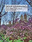 Deep Learning (Adaptive Computation and Machine Learning series) - Ian Goodfellow