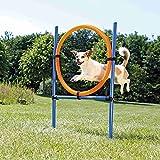 Trixie Dog attività Agility Anello, 115ラ 3cm 65cm, Colore: Arancione/Blu...