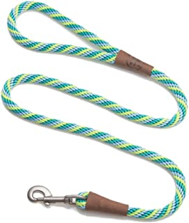 "Mendota 3/8"" by 4' Snap Leash, Seafoam, Small"