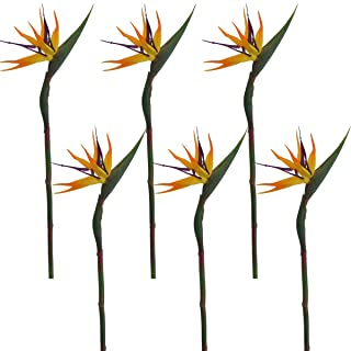 Lily Garden Pack of 6 Bird of Paradise Spray Natural (Orange, 22.5 Inch)