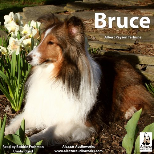 Bruce audiobook cover art