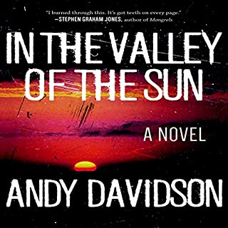 In the Valley of the Sun: A Novel cover art