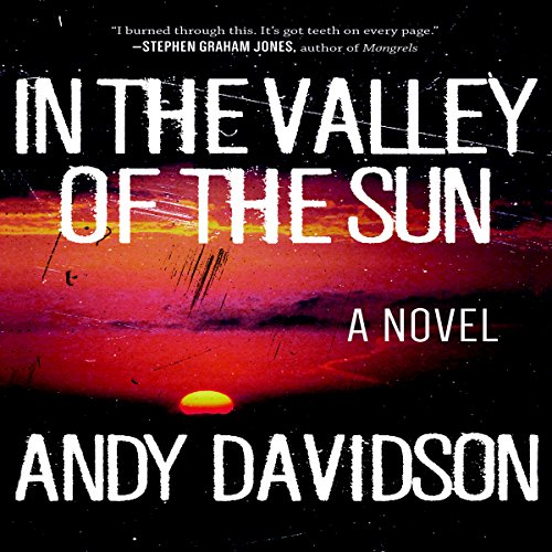 In the Valley of the Sun: A Novel audiobook cover art