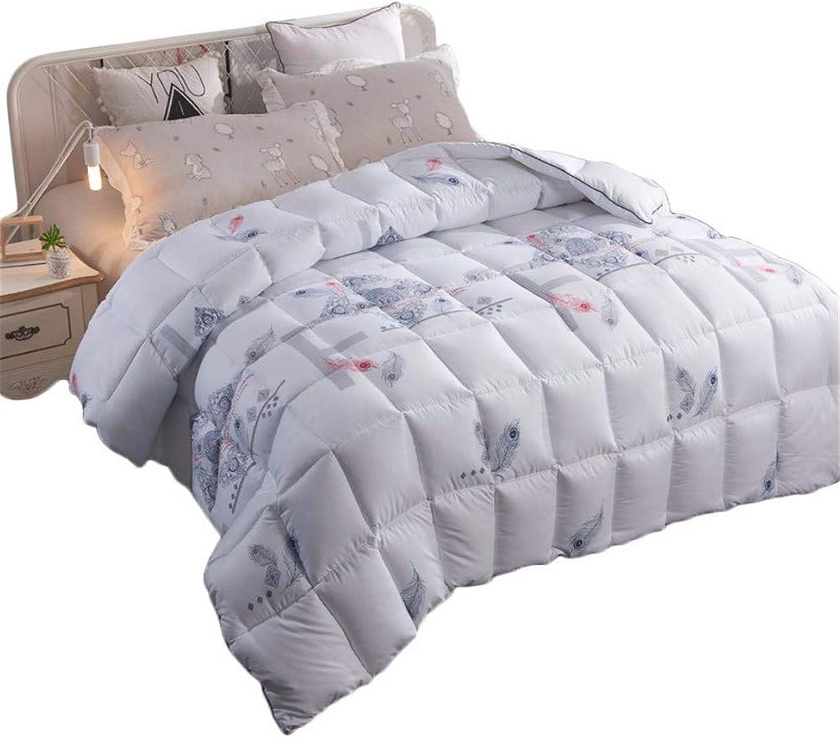 WanJiahomengrenerop Couettes Couette épaisse en Cachemire Chaude et Confortable Nécessaire en Hiver Article de literie Taille Multi en Option, 220x240cm 4kg