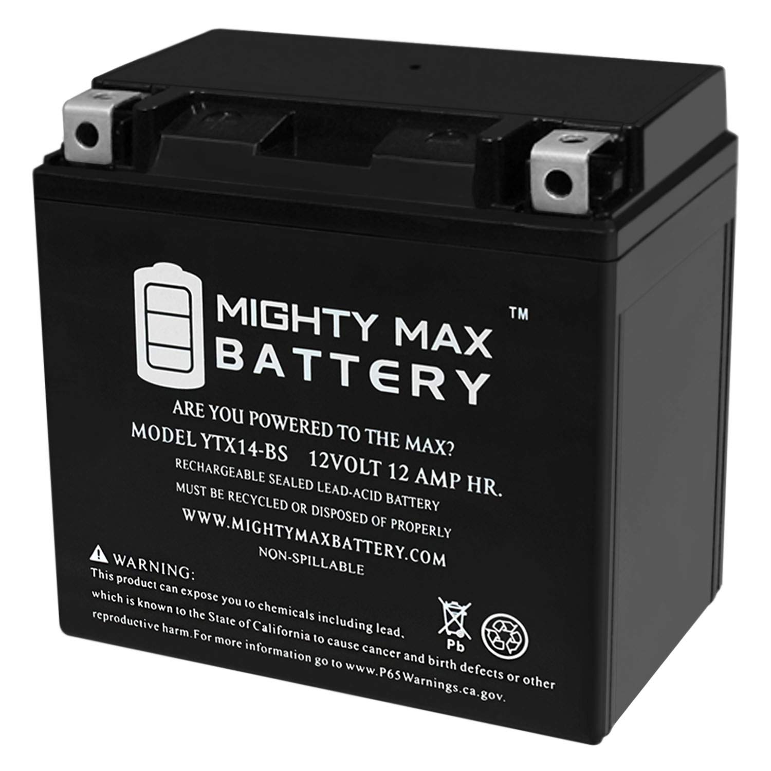 Mighty Max Battery Replacement 2008 2009