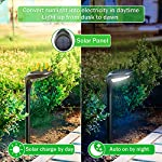 OSORD Outdoor Solar Pathway Lights, Waterproof 2-in-1 Solar Powered Wall Light Landscape Lighting Auto On/Off with 2 Color Modes Solar Lights for Garden Path Yard Patio Walkway Driveway Pool (4 Pack) Pathway